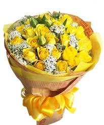 Tặng hoa gì thay cho lời xin lỗi