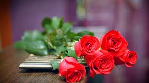 Những dịp trong năm nên tặng hoa cho vợ