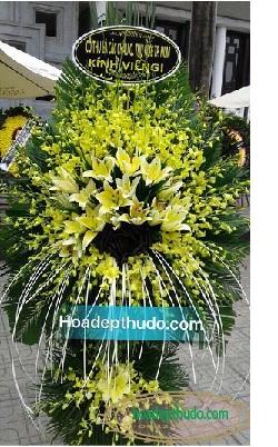 Cây lan vàng hai tầng sang trọng nhất ở hà nội, rất thích hợp cho việc đi viếng